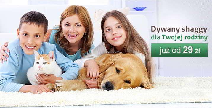 Dywany shaggy do Twojego domu
