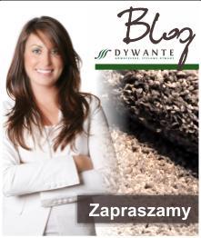 Blog sklepu z dywanami Dywante, porady, czyszczenie dywanów